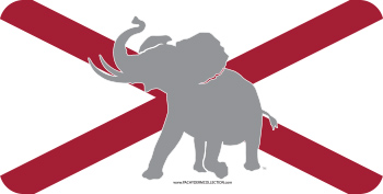 Pachyderm State Flag Plastic Tag