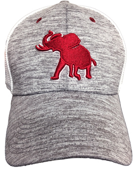 Heathered Mesh Back Pachyderm Snapback Cap